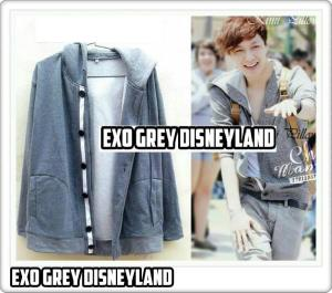 15 LAY DISNEYLAND JACKET